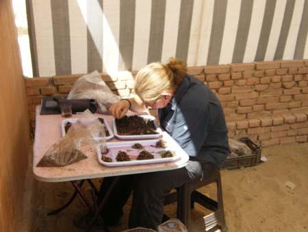 Lisa Yeomans (zooarqueologa). Exploration Society's Expedition. Imagem disponível em . Acesso em 21 de setembro de 2013.