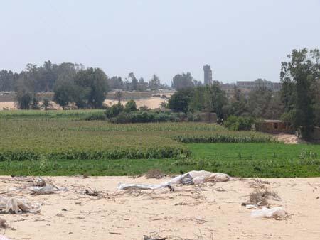 Sítio arqueologico na área de Quesna (Egito). Imagem disponível em . Acesso em 21 de setembro de 2013.